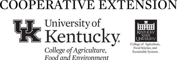 CES and KY State Logo combined